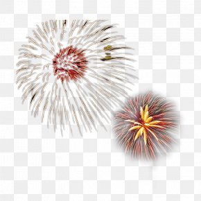 Creative Pull The Bloom Of Fireworks Free - Fireworks Firecracker PNG
