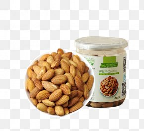 Shell Almonds - Nut Almond Apricot Kernel Dried Fruit PNG