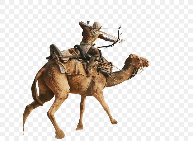 Assassin's Creed: Origins Ubisoft Game Assassins Denuvo, PNG, 626x600px, Ubisoft, Arabian Camel, Assassins, Camel, Camel Like Mammal Download Free