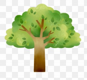 Green Tree Cartoon Map - Green Tree Cartoon PNG