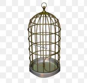 Bird Iron Cage - Bird Cage Iron PNG