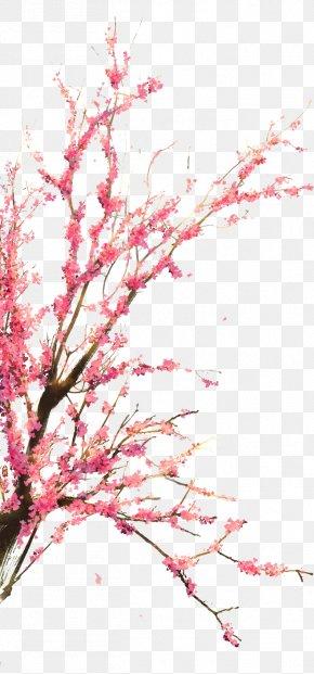 Cherry Garden Trees PNG
