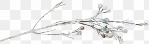 Snow Tree - Tree Branch Snow Winter Twig PNG