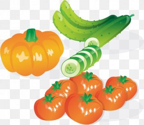 Tomato Cucumber Pumpkin Vector Material - Leaf Vegetable Cucumber Salad PNG