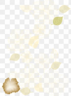 Flowers Pattern - White Pattern PNG