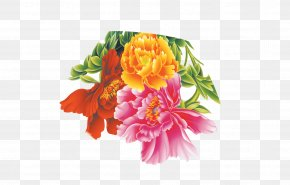 Peony - Flower Moutan Peony Floral Design PNG