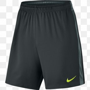 Nike - Gym Shorts Nike Dry Fit Running Shorts PNG