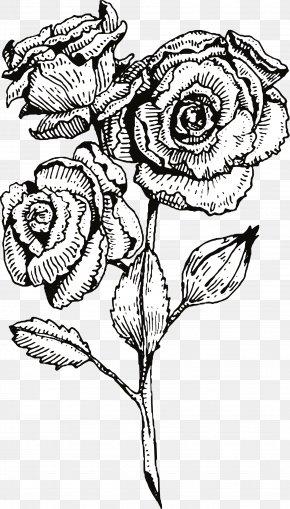Black Line Flowers - Lisas Hair Design Floral Design Flower Black PNG
