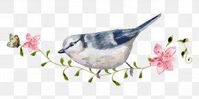 Cartoon Bird Flowers Hand-painted Watercolor Station Branches - Bird Carpet Mat Floor PNG