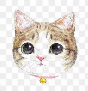 Cartoon Cat - Cat Dog Colored Pencil Painting Cuteness PNG