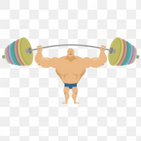 The Fat Man Holding The Barbell - Barbell Saint Patricks Day Bench Press Olympic Weightlifting Clip Art PNG