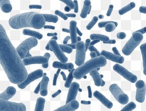 Sky Blue Insect-shaped Microbes - Human Microbiome Project Dietary Supplement Disease Gut Flora Microbiota PNG