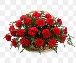 CARNATION - Basket Flower Bouquet Zakazat' Buket Garden Roses PNG