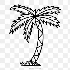 Tree - Drawing Branch Arecaceae Tree Clip Art PNG