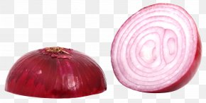 Red Sliced Onion - Red Onion PNG