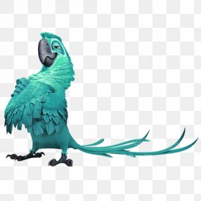 Green Family Parrot Decorative Motifs - Blu Rio Wikia Icon PNG