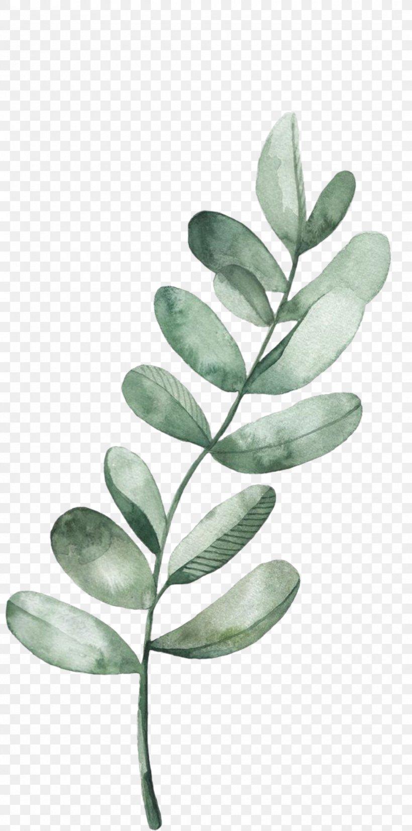 Leaf Plant Flower Tree Branch, PNG, 1080x2177px, Leaf, Blackandwhite, Branch, Flower, Plant Download Free