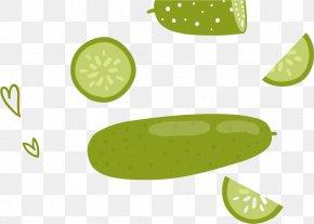 Cucumber Vector Material - Computer Graphics PNG