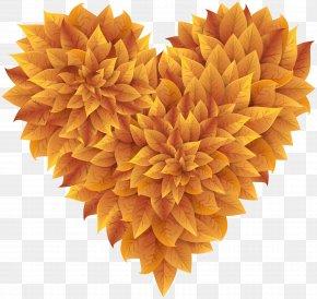 Autumn Leaves Heart Clipart Image - Autumn Leaf Color Clip Art PNG