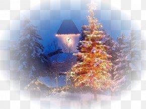Christmas - Christmas Tree Christmas Card New Year Holiday PNG