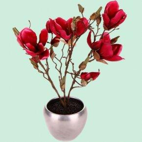 Brush Pot - Magnolia Flowerpot Houseplant PNG