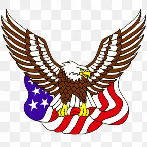 Eagle - United States Of America Bald Eagle Flag Of The United States Clip Art PNG