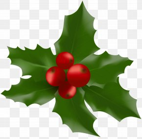 Christmas Mistletoe Large Clipart Image - Mistletoe Clip Art PNG