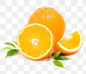 Orange - Tangerine Lemon Clementine Orange Frutti Di Bosco PNG