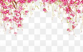 Flower Border - Euclidean Vector Flower PNG