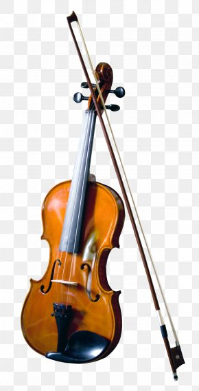 Violin - Bass Violin Double Bass Musical Instrument PNG