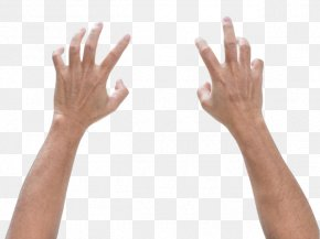Hand - Finger Hand Digit Ratio Foot Male PNG