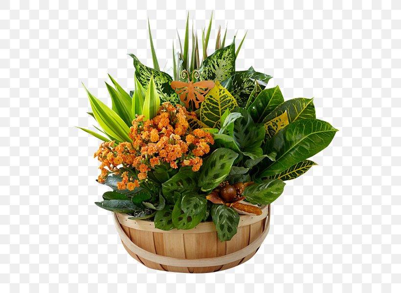 Garden Design Flower Basket Plant Png 600x600px Garden Autumn