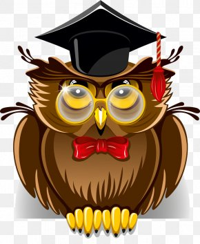 Owl - Royalty-free Stock Photography Clip Art PNG