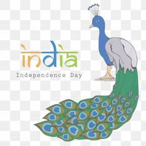 Vector Peacock India Independence Day - Indian Independence Day Asiatic Peafowl Flag Of India PNG