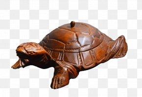 Wood - Box Turtles Tortoise Teak Wood Symbol PNG