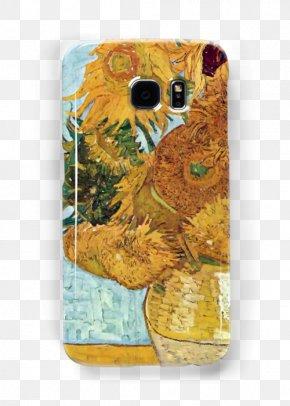 Vincent Van Gogh - Vase With Twelve Sunflowers Irises Van Gogh Museum Vase With Five Sunflowers PNG
