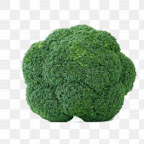 Broccoli - Organic Food Leaf Vegetable Broccoli PNG