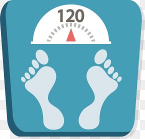 Flat Weight Scale - Weight Android Application Package Body Mass Index PNG