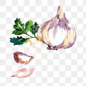 Onion Vegetables - Chili Con Carne Garlic Watercolor Painting Drawing PNG
