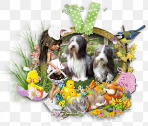 Puppy - Dog Breed Shih Tzu Puppy Companion Dog Easter PNG
