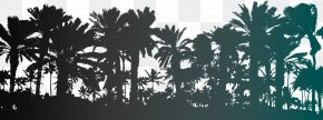 Vector Palm Trees Silhouettes - Arecaceae Tree Stock Photography Illustration PNG