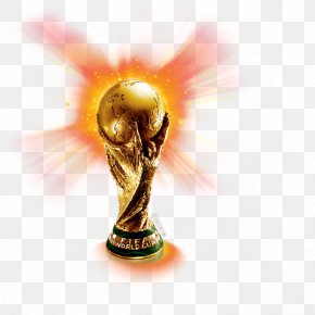 Cup - 2010 FIFA World Cup South Africa 2006 FIFA World Cup 2014 FIFA World Cup 2022 FIFA World Cup PNG