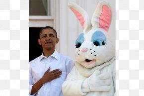 White House - White House Easter Bunny Easter Egg Rabbit PNG