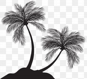 Two Palm Trees Silhouette Clip Art - Arecaceae Silhouette Clip Art PNG