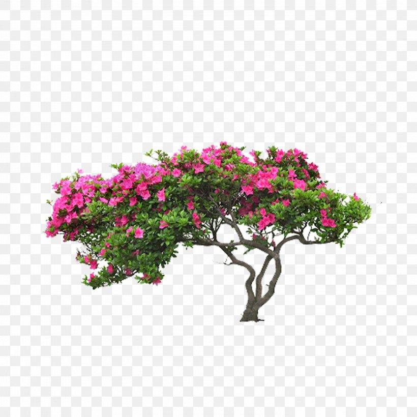 Tree Flower Leaf Plant, PNG, 2953x2953px, Tree, Autumn Leaf Color, Blossom, Branch, Flora Download Free