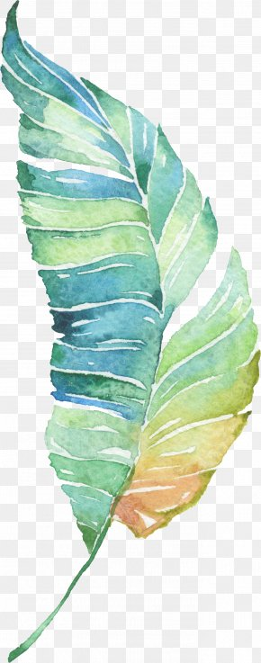 Water Painted Green Leaves PNG