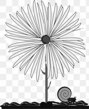 Flower - Flower Common Daisy Clip Art Borders And Frames Yellow PNG