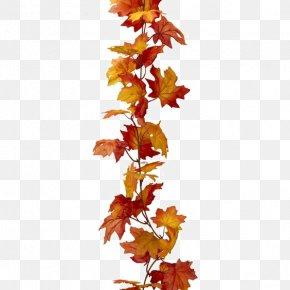 Red Maple Leaf - Maple Leaf Autumn Leaf Color PNG