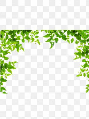 Green Leaves Border - Borders And Frames Leaf Green Clip Art PNG