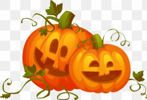 Halloween Vector Material - Pumpkin Royalty-free Stock Illustration Clip Art PNG